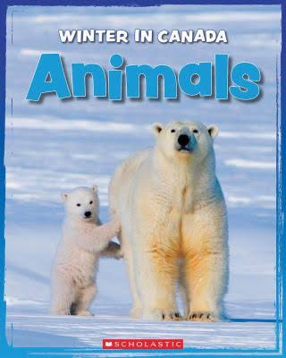 Animal Winter in Canada