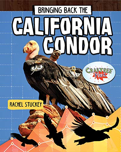 Bringing Back the California Condor